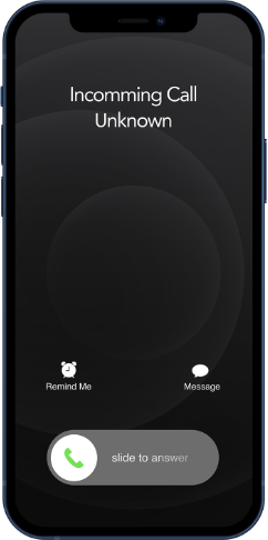 Normal Call Screen